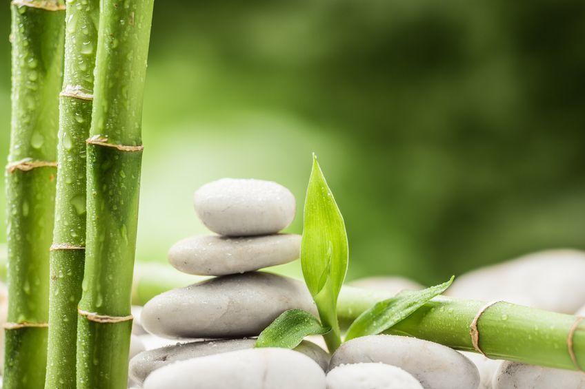 Massage - Beauty with Senses La Stone Therapy